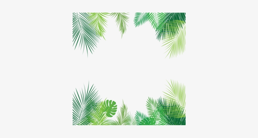 Tropical Palm Leaves Png, Palm, Tropical Leaves, Leaves - Tropical Leaves Border Png@seekpng.com