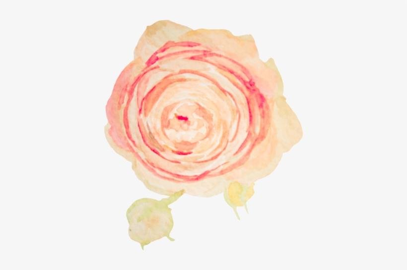 5 Blush Pink Flower Watercolor Transparent Png Image Transparent