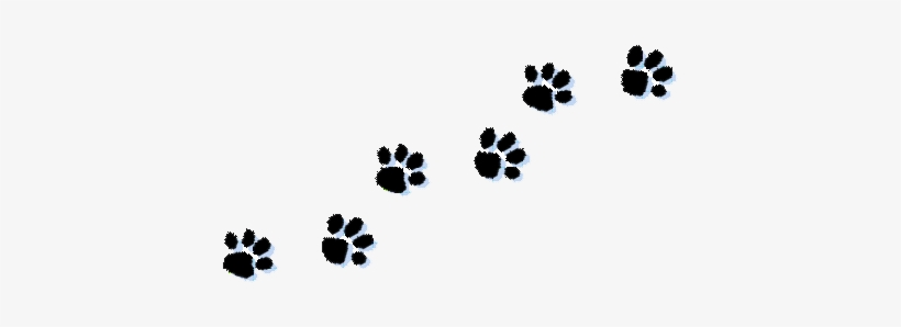 Paw Print Tattoos On Dog Paw Prints Scroll Clipart Transparent Background Paw Prints Clip Art Png Image Transparent Png Free Download On Seekpng ✓ free for commercial use ✓ high quality images. paw print tattoos on dog paw prints