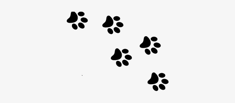 Cat Paw Print Png Cat Paw Prints Transparent Png Image Transparent Png Free Download On Seekpng Discover 135 free cat paw print png images with transparent backgrounds. cat paw print png cat paw prints