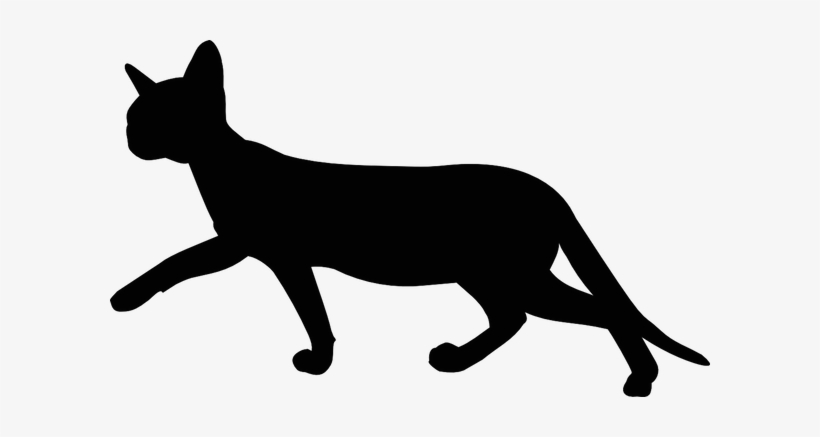 Free Digital Walking Cat Silhouette Transparent Background Cat Clipart Png Image Transparent Png Free Download On Seekpng