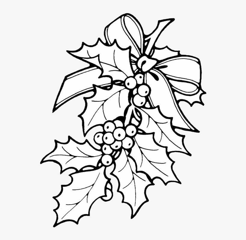 Alluring Christmas Holly Drawings Wellsuited Coloring