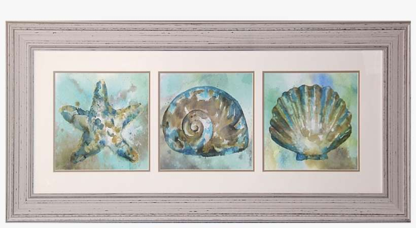 Starfish Shell Scallop Framed Art