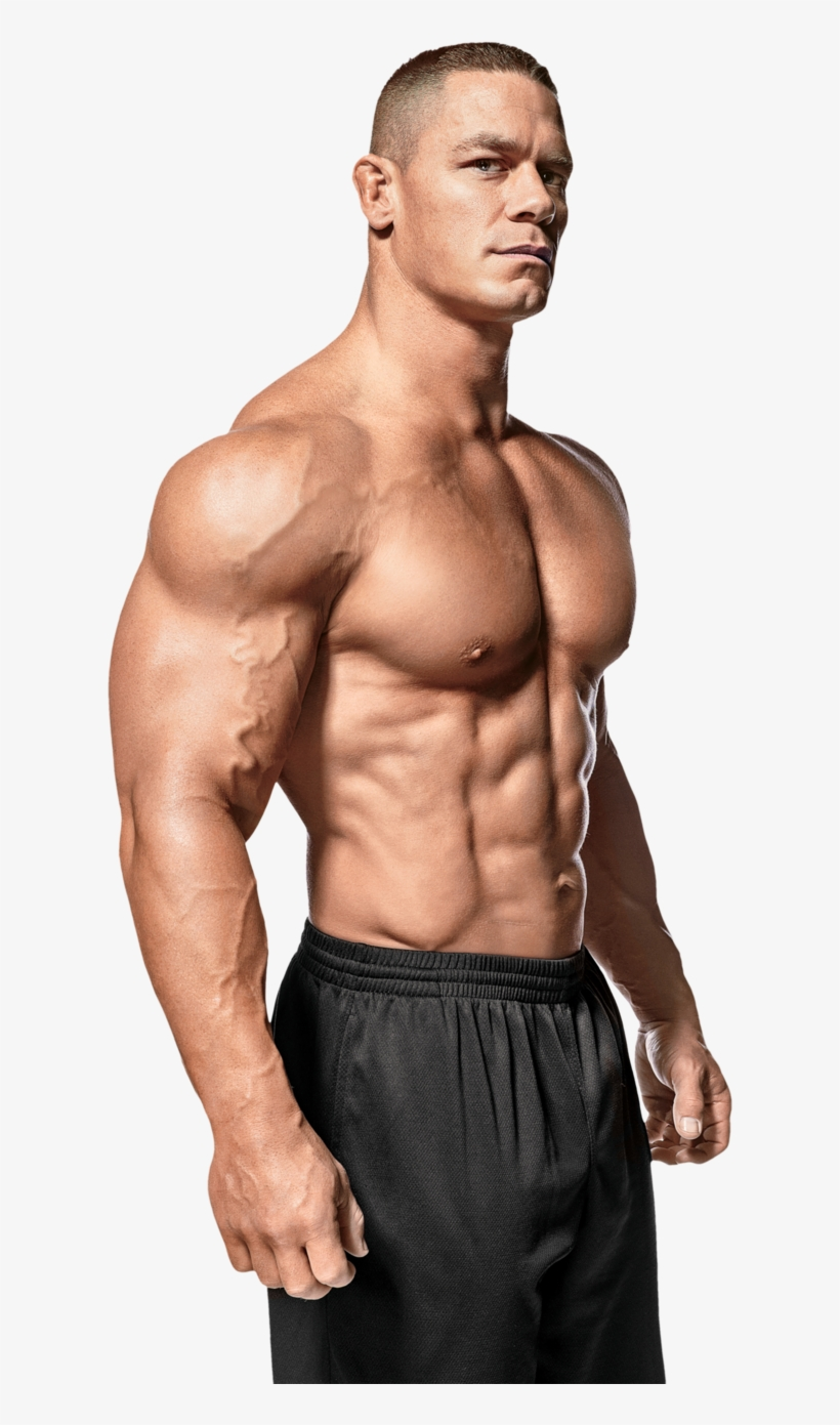 John Cena And Fitness Muscle Man Clip Art Library Download Roman Reign Body Building Png Image Transparent Png Free Download On Seekpng