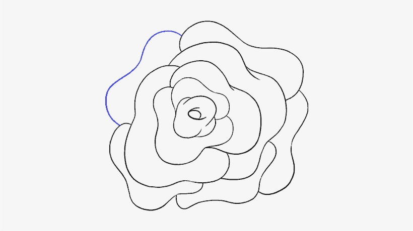 How To Draw A Rose Flower Easy Drawing Guides Drawing Png Image Transparent Png Free Download On Seekpng