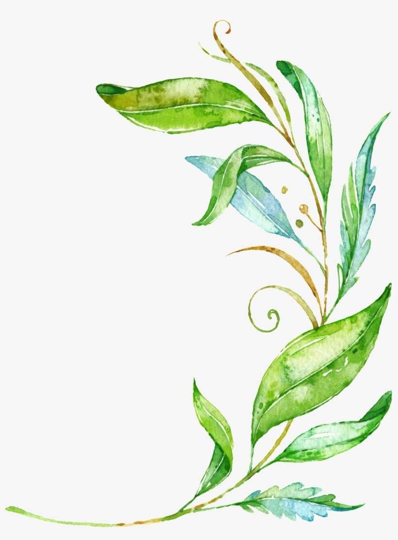 Plant Vector Transparent - Green Leaves Vector Png@seekpng.com