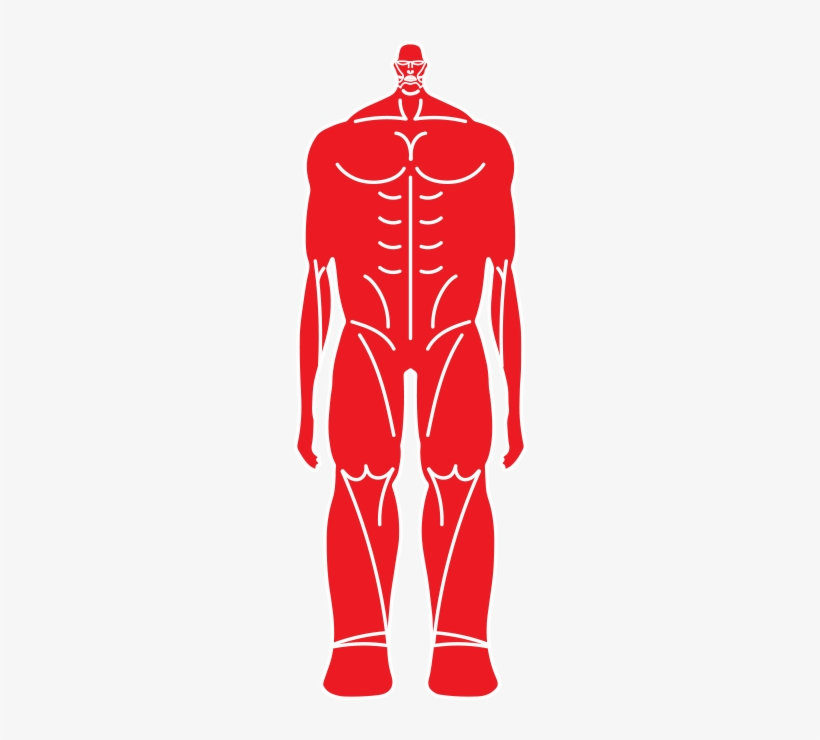 Colossal Titan Inforgraphic Colossal Titan Png Attack On Titan Png Image Transparent Png Free Download On Seekpng