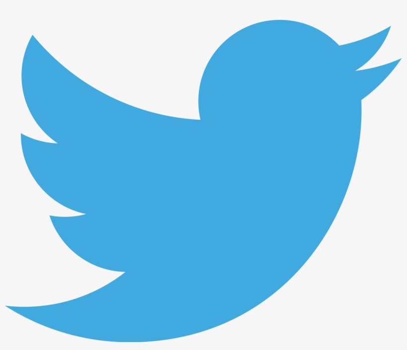 Image result for twitter logo for white background