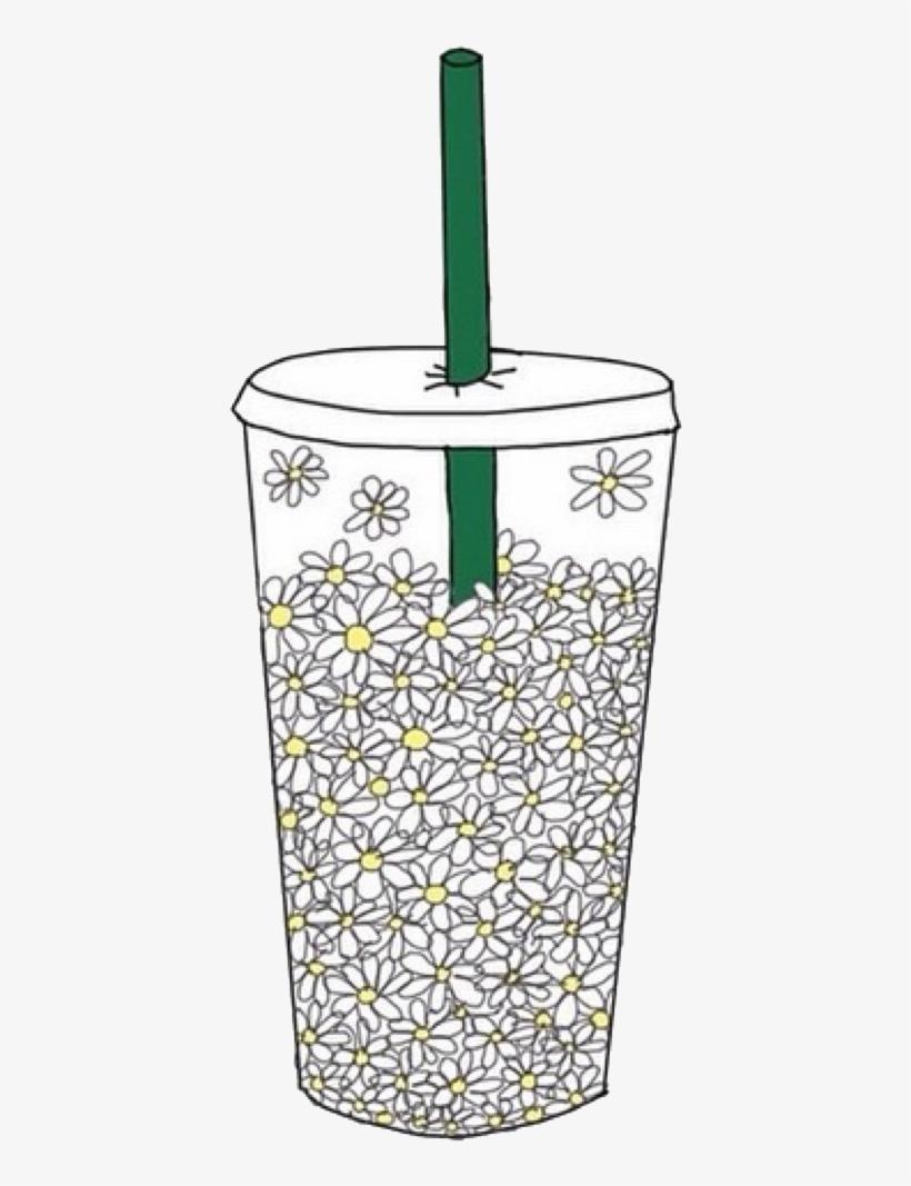 Drink Starbucks Coffee Cup White Flowers Daisy Aestheti