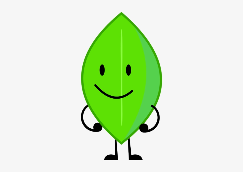 Leafy - Bfdi Leafy PNG Image | Transparent PNG Free Download