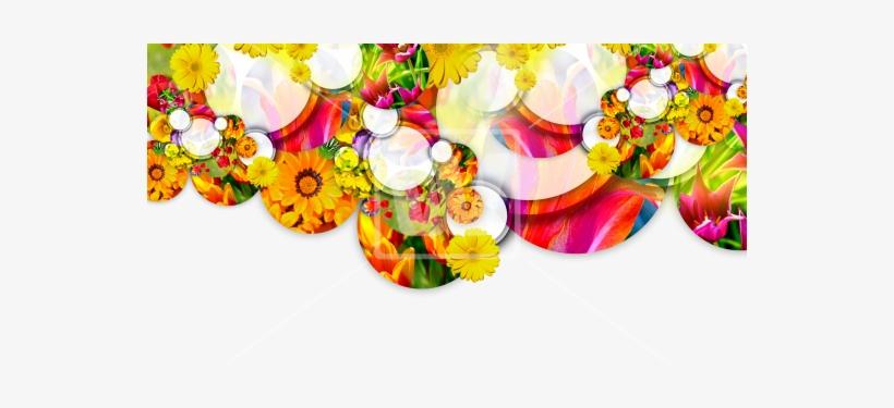 Spring Header Flower Header Transparent Png Png Image