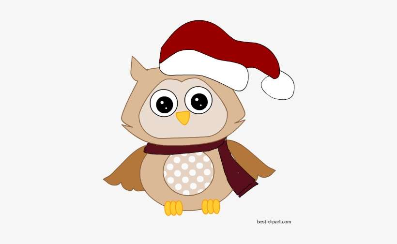 Christmas Hat Transparent Clipart.Owl Wearing Christmas Hat Free Clip Art Christmas Day Png