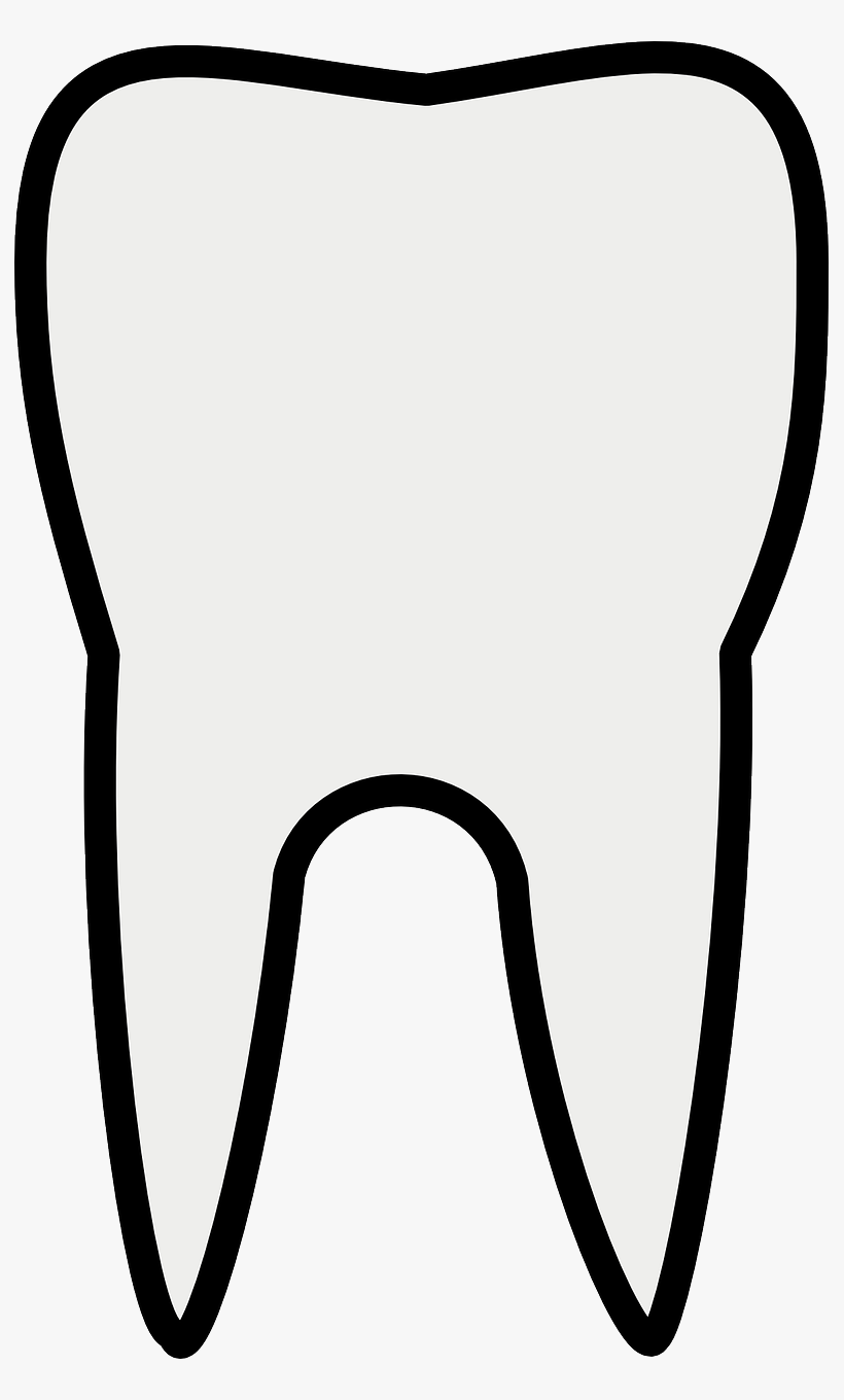 Tooth Line Art Free Vector Tooth Clipart Black And White Png Image Transparent Png Free Download On Seekpng