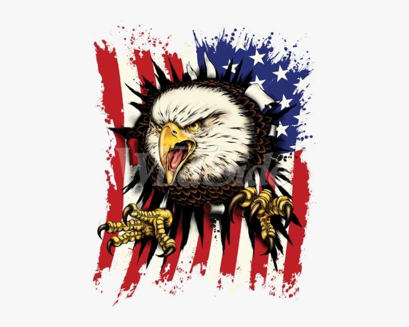 American Flag Eagle Png Clipart Stock Adler Die Rippen Durch Die