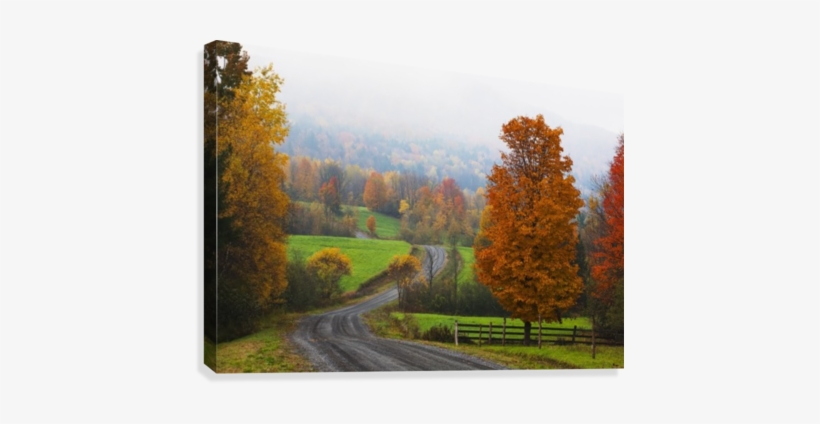 Dirt Road In Autumn With Early Morning Fog - Foggy Autumn Dirt Road@seekpng.com