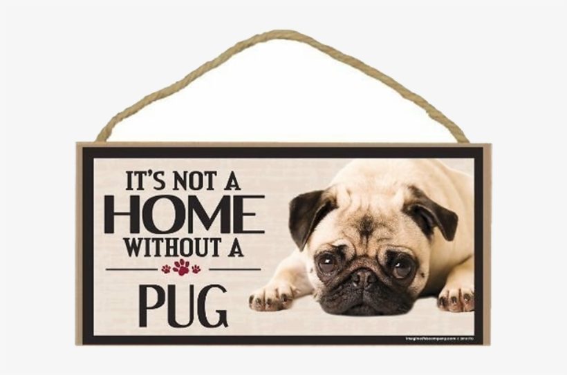 Imagine This Company S It S Not A Home Without Pug Real Dog