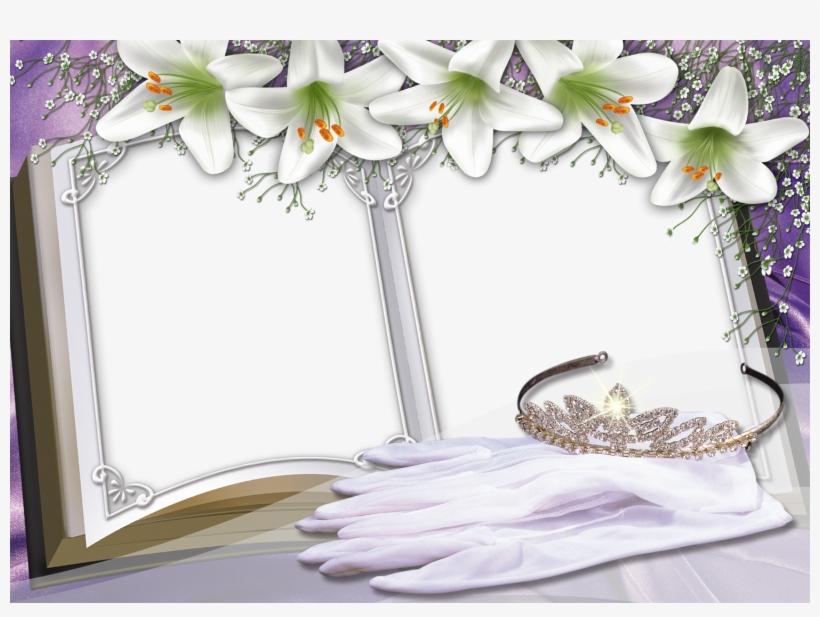 Album Photo Wedding Frame Background - Background Frames For