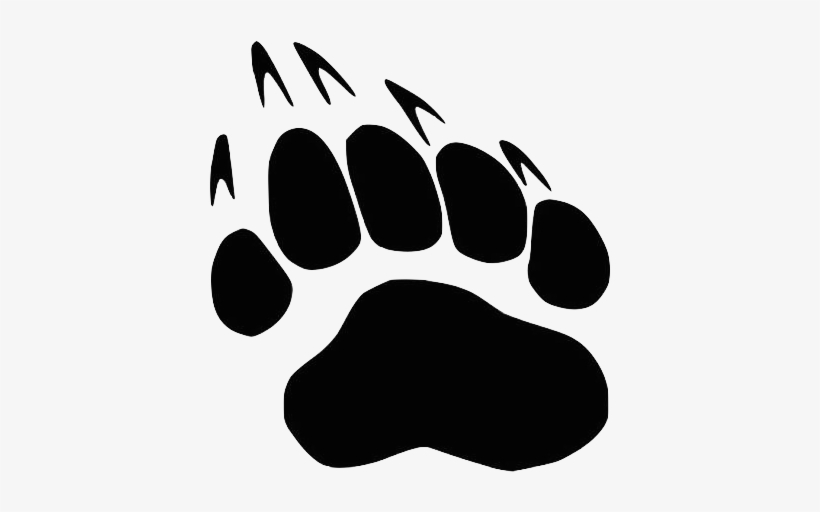 Bear Paw Print Png / It's high quality and easy to use.
