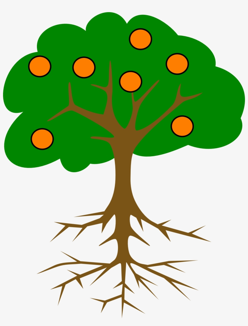 Drawing Of An Orange Tree With Roots - Tree Drawing With Fruits@seekpng.com