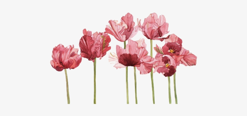 Grunge Blog Flower Tumblr Transparent Png Image Transparent Png