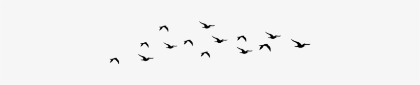 Flying Bird Png - Birds Flying Silhouette Png PNG Image