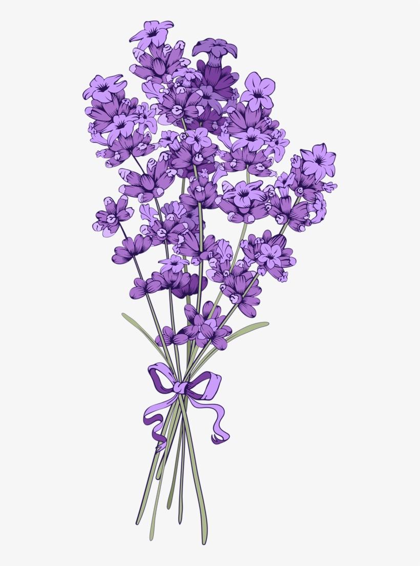 Floral Vintage Background With Lavender Lavender Flower