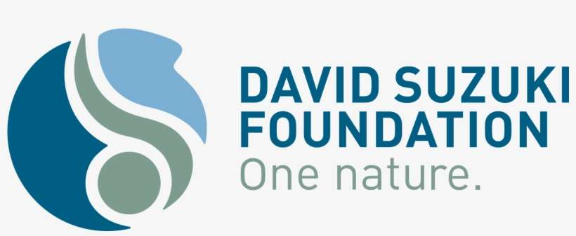 The New David Suzuki Foundation Logo Can Be Downloaded