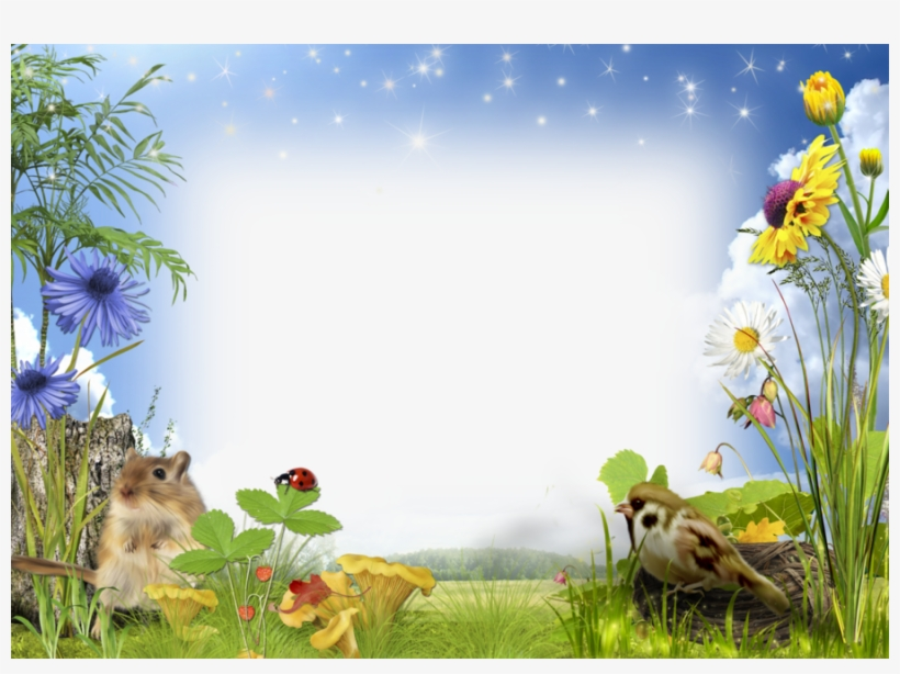 download frame photo nature png clipart picture frames nature photo frame png png image transparent png free download on seekpng download frame photo nature png clipart