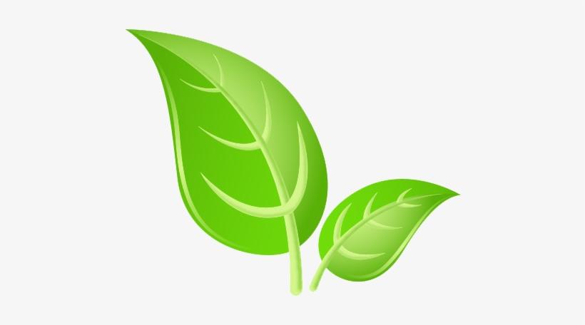 Green Leaves Png Hd Images Green Leaf Png Image Transparent Png Free Download On Seekpng