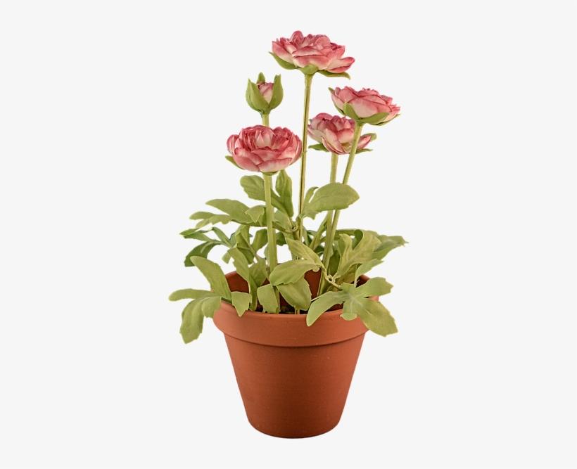 Potted Plants Clipart Transparent Background - Flower Pot Transparent Background@seekpng.com