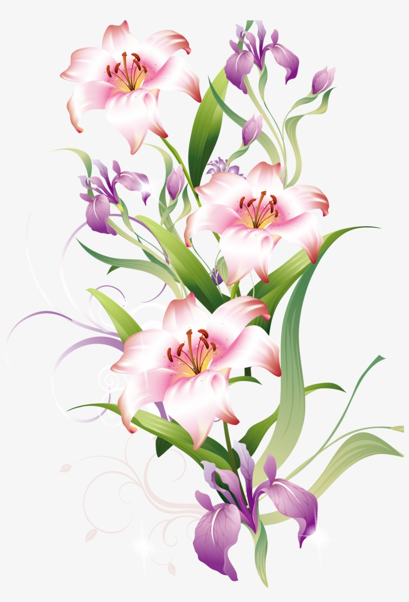 Lily flower clipart - ClipartFest | Lily flower, Pink lily flower,  Watercolor flowers tutorial