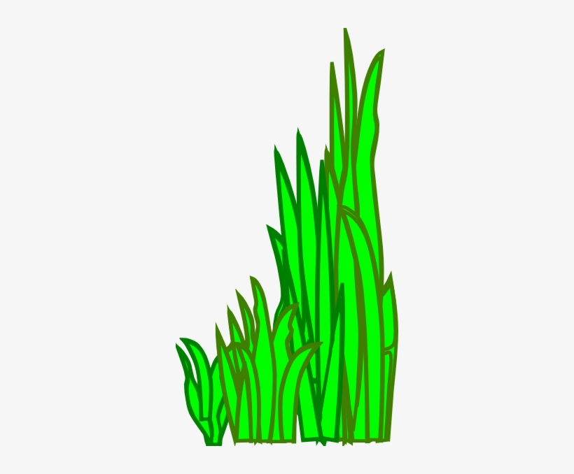 grass clip art gambar rumput laut animasi png image transparent png free download on seekpng grass clip art gambar rumput laut