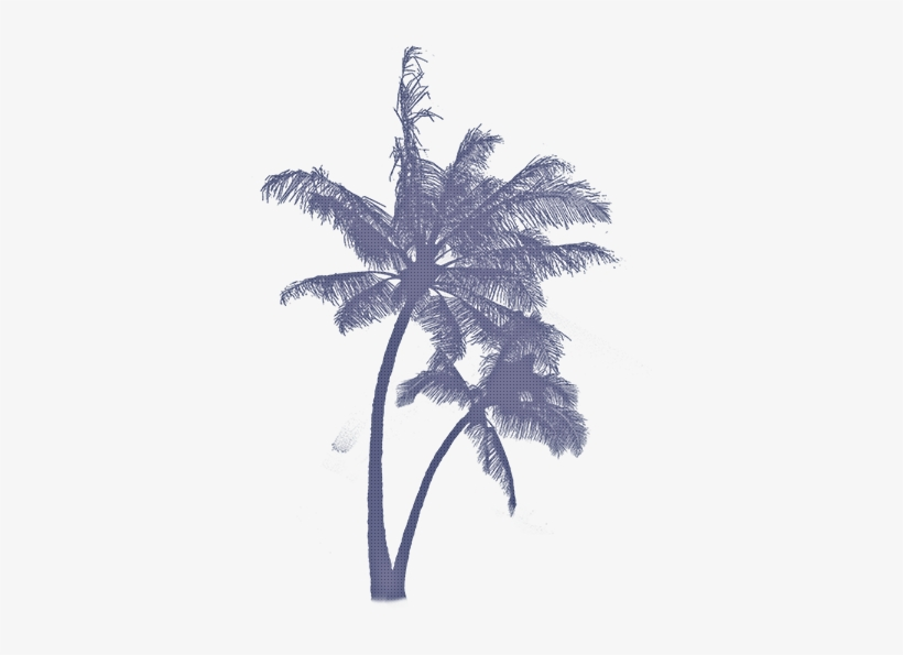 Ftestickers Coconuttree Aesthetic Blue Beachstickers Tropical
