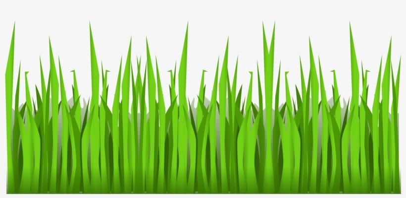 Grass Clipart Cartoon - Cartoon Grass No Background@seekpng.com