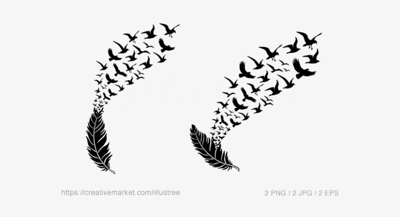 Bird Feather Transparent Background Arts Png Background
