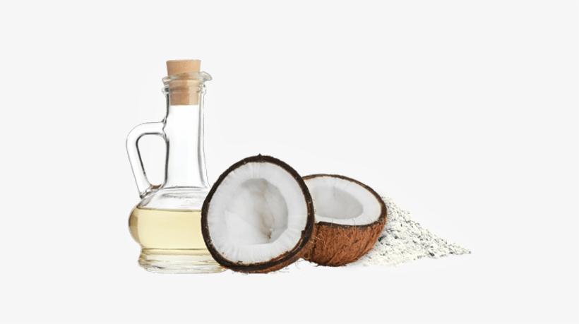 Coconut Oil Powder - Molivera Organics Fractionated Coconut