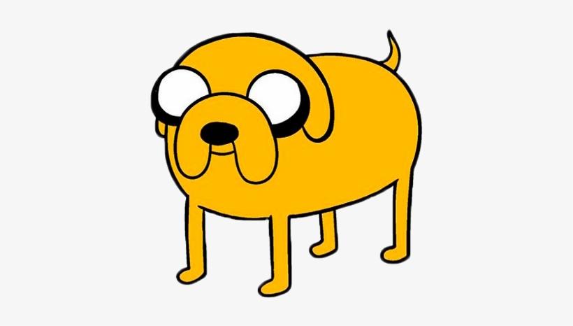 Historia De Hora De Aventura Jake The Dog Png Image