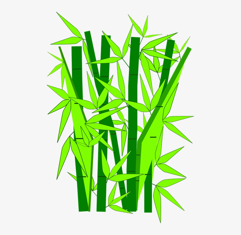 bamboo tree vector png gambar kartun pohon bambu png image transparent png free download on seekpng bamboo tree vector png gambar kartun