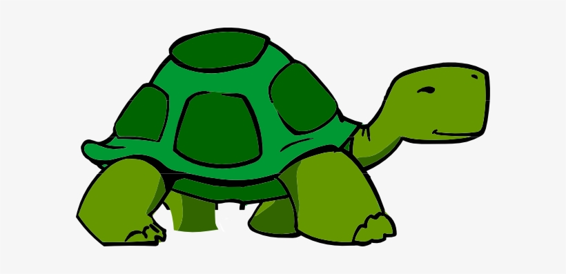 Clipart Turtle Box Turtle Animated Picture Of A Turtle Png Image