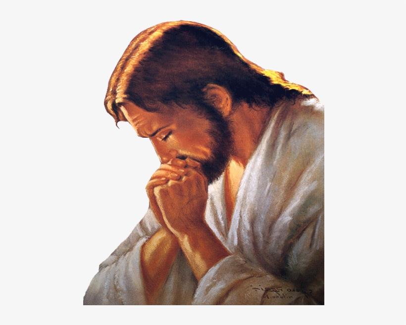 Jesus Orando Jesus Praying Png Image Transparent Png Free Download On Seekpng Find & download free graphic resources for jesus. jesus orando jesus praying png image