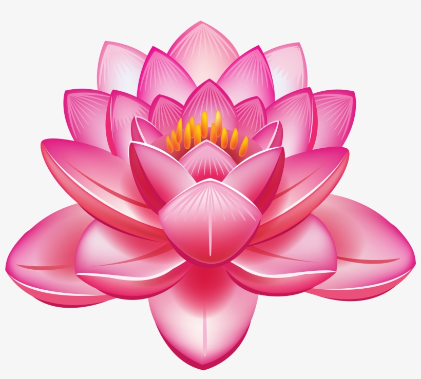 Lotus Flower Vector Png Lotus Clipart Png Image Transparent Png