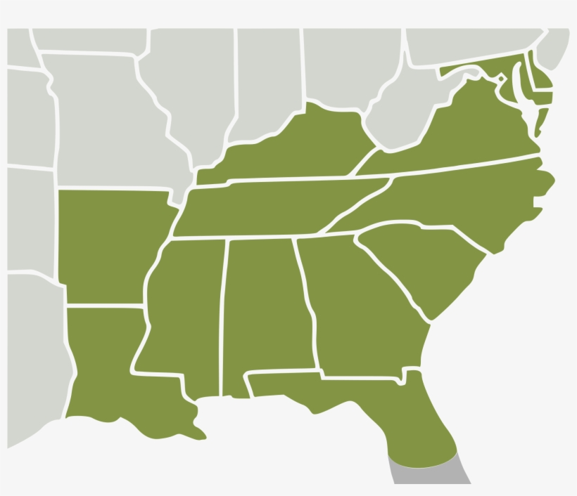 Svg Us Map Of Southeastern States Southeast Region - Vector ... Images Of Southeast Us Maps on map of florida, map of cuba, map of northeast us, deep south, new england, united states of america, map of east coast, mid-atlantic states, history of slavery in the united states, map of louisiana, eastern united states, bible belt, american civil war, southern united states, great migration, map of mississippi, map of united states, map of north carolina, map of georgia, map of southeastern us, confederate states of america, east coast of the united states, southeastern united states, great plains, map of eastern us, western united states, map of south usa, map of us military bases, southwestern united states, map of midwest, map of south carolina, map of arkansas, map of southern us, map of northwest us, northeastern united states, map of west central us, midwestern united states, map of us highways,