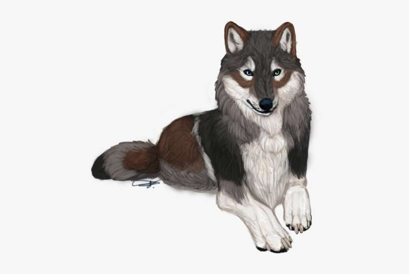 Realistic Looking Anime Wolves Png Image Transparent Png Free Download On Seekpng
