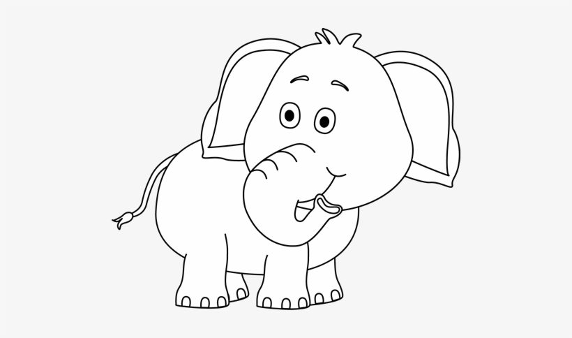 White Elephant Png Transparent Image Elephant Clipart Black And White Png Png Image Transparent Png Free Download On Seekpng Explore free elephant png images & elephant transparent images on vhv.rs. white elephant png transparent image