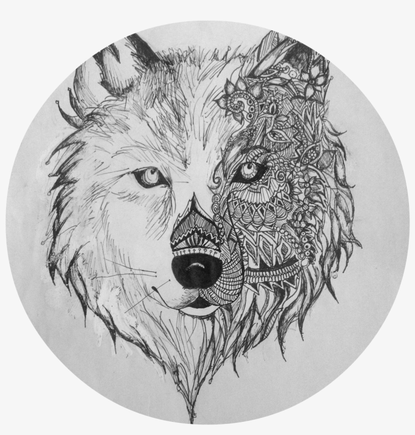 Wolf Sketch Wolves Drawings Transparent Png Download