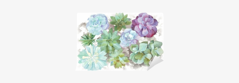 Watercolor Flowers Succulents Wall Mural Pixers174 Acuarela