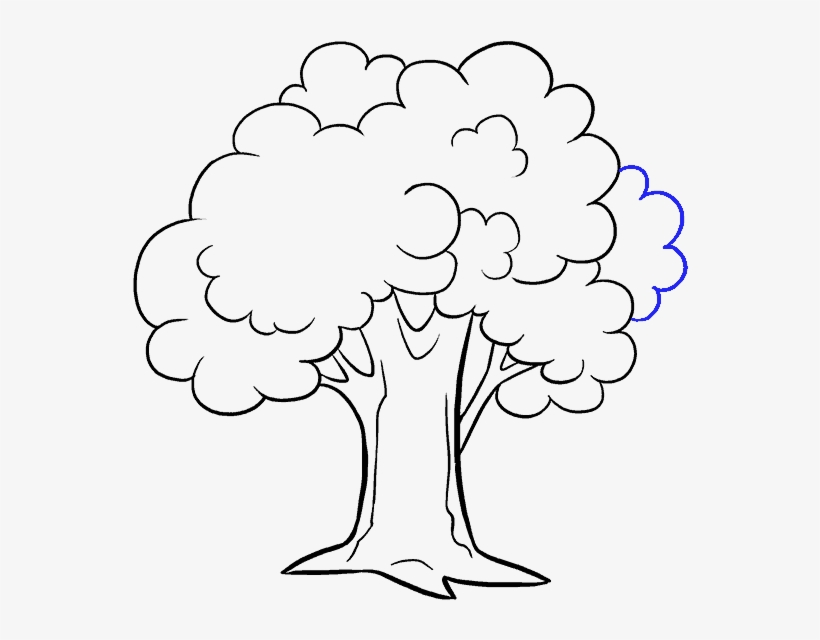 Tree Drawing Png Png Images Png Cliparts Free Download On Seekpng Amazon art houses the finest in art drawings in mediums such as pencil, charcoal, and more. tree drawing png png images png