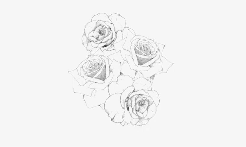 Transpa Black And White Flowers Tumblr Rose Arm Tattoo Stencils