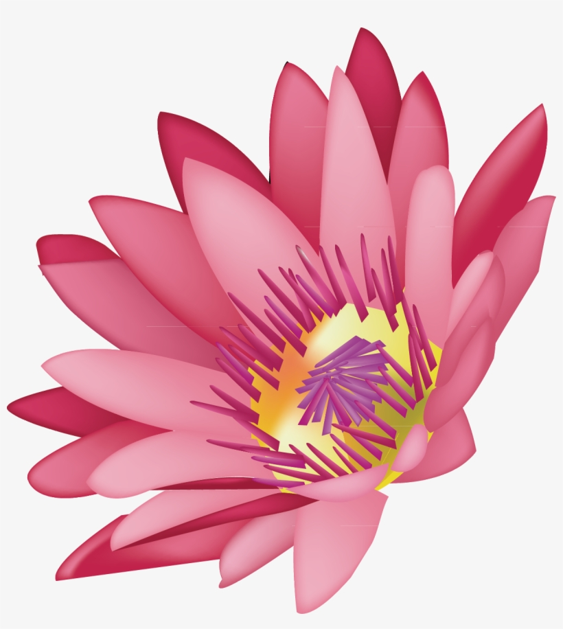 Svg Library Stock Lotus Decoration Design Graphics Lotus Flower