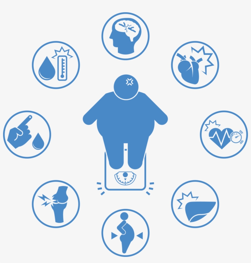 Major Health Risks Causes Of Obesity Png Png Image Transparent Png Free Download On Seekpng